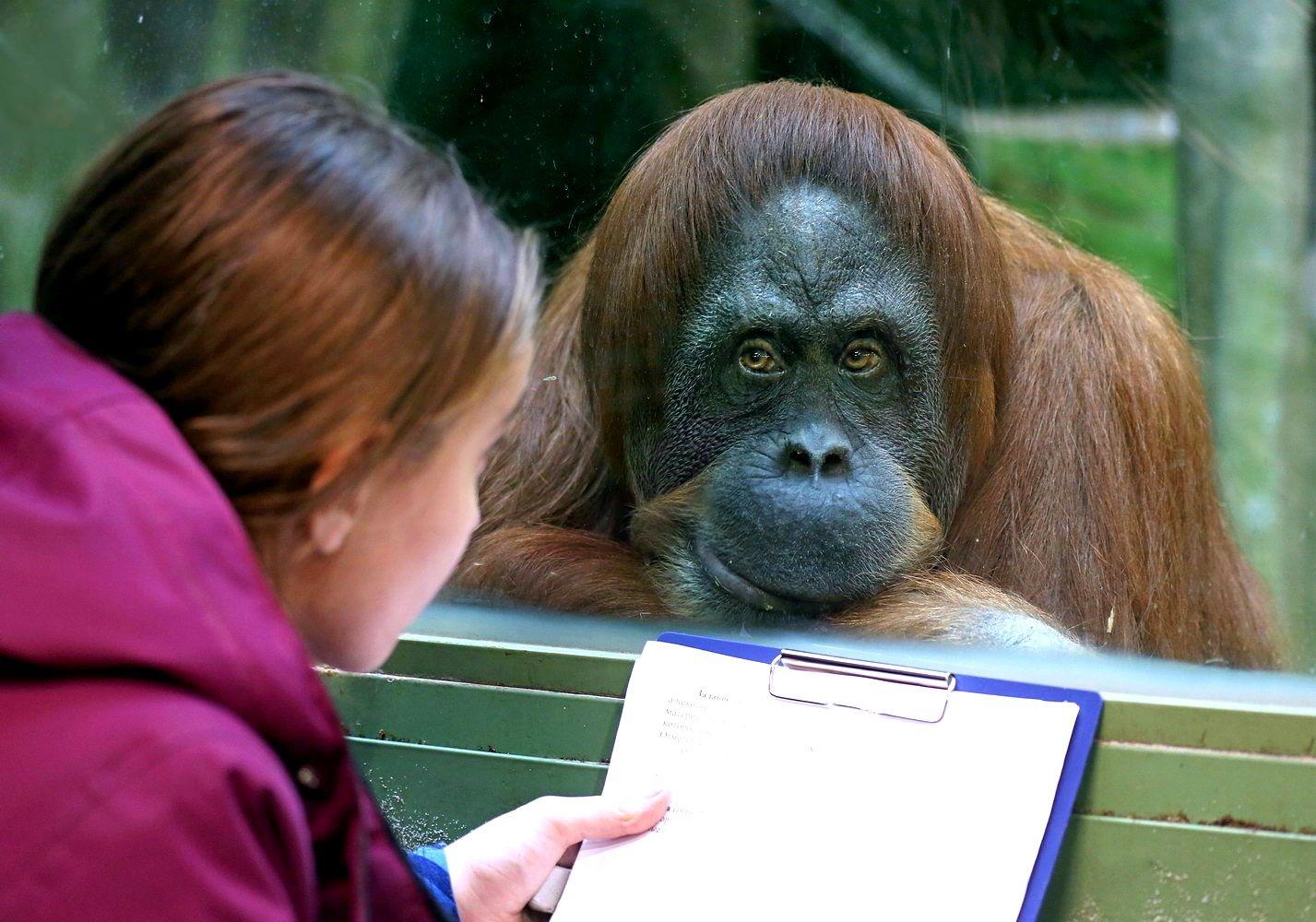 Зоопарк в вашем багаже, или нескучная наука